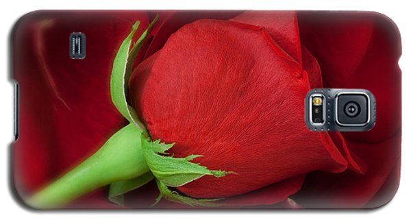 Rose II Galaxy S5 Case by Andreas Freund