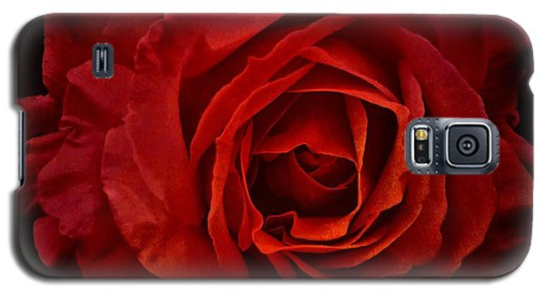 Rose In Red Galaxy S5 Case
