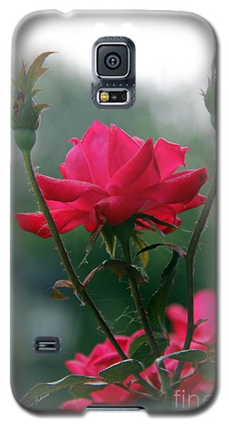Rose In The Fogg Galaxy S5 Case by Yumi Johnson
