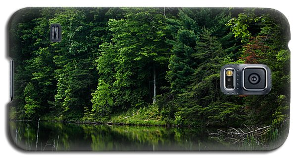 Rose Lake Beauty Galaxy S5 Case