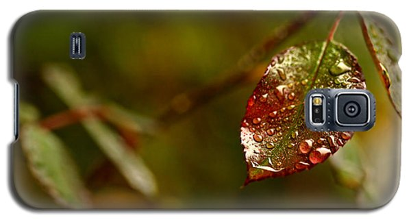 Galaxy S5 Case featuring the photograph Rose Leaf by Liz  Alderdice