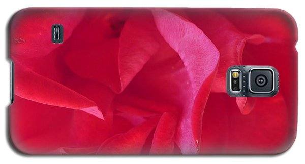 Galaxy S5 Case featuring the photograph Rose by Nora Boghossian