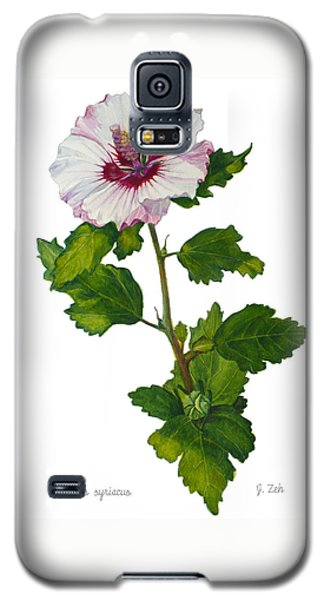 Rose Of Sharon - Hibiscus Syriacus Galaxy S5 Case