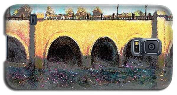 Galaxy S5 Case featuring the painting Rose Petals Floating Under The Moody Street Bridge by Rita Brown
