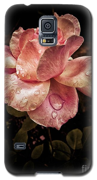 Rose Petals With Raindrops Galaxy S5 Case