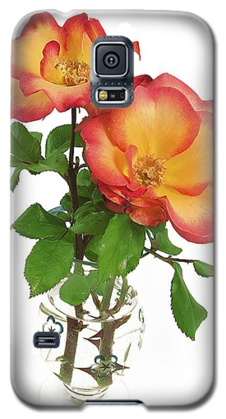 Rose 'playboy' Galaxy S5 Case