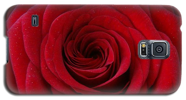 Galaxy S5 Case featuring the photograph Rose Red by Shawn Marlow
