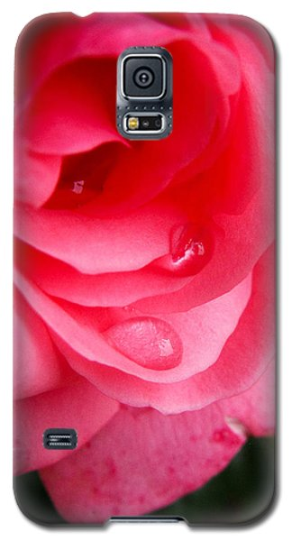 Rose Teardrop Galaxy S5 Case by Dawn Romine