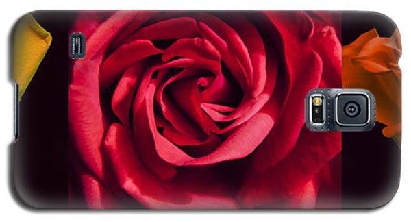 Galaxy S5 Case featuring the photograph Rose Triad I by John Hansen