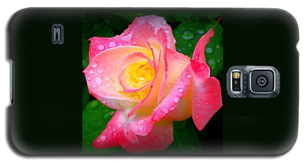 Rose With Water Droplets  Galaxy S5 Case