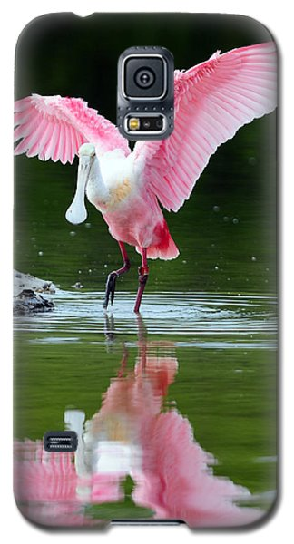 Roseate Spoonbill Galaxy S5 Case by Clint Buhler