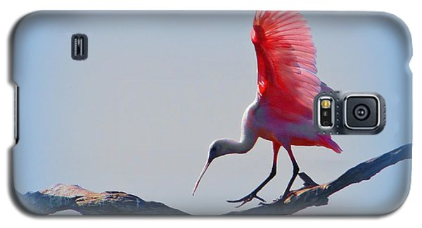 Galaxy S5 Case featuring the photograph Roseate Spoonbill by David Mckinney