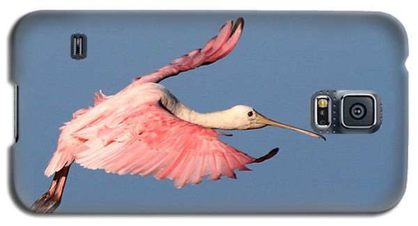 Roseate Spoonbill Flight Galaxy S5 Case
