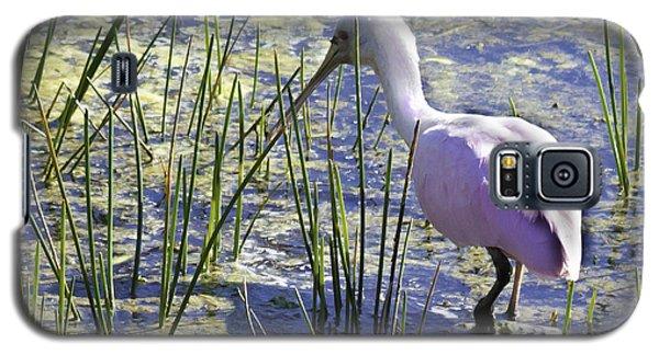 Roseate Spoonbill IIi Galaxy S5 Case