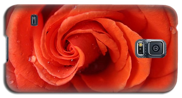 Galaxy S5 Case featuring the photograph Roses And Raindrops by Jeanette French