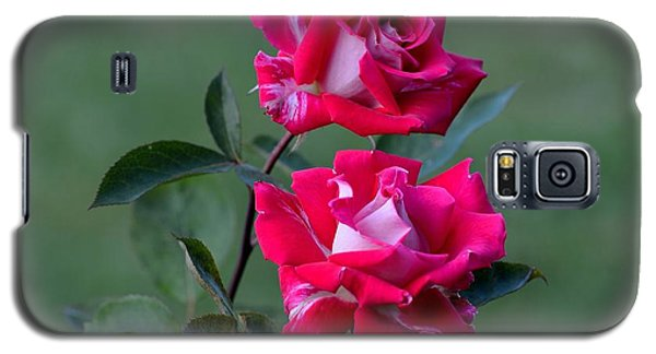 Galaxy S5 Case featuring the photograph Roses Are... by Kathy King