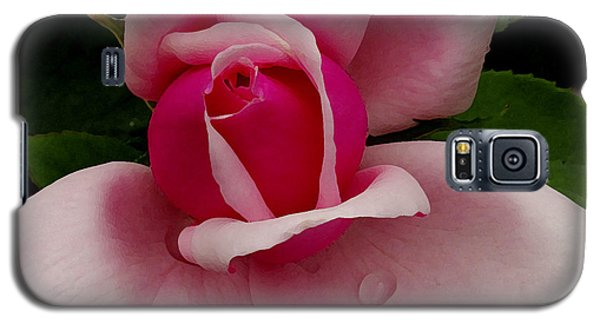 Roses Are Pink  Galaxy S5 Case