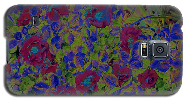 Galaxy S5 Case featuring the photograph Roses By Jrr by First Star Art