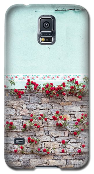 Roses On A Wall Galaxy S5 Case