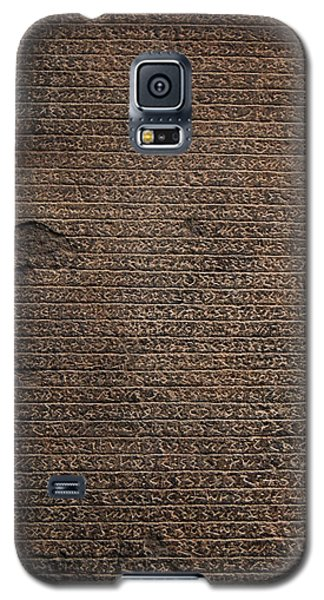 Rosetta Stone Texture Galaxy S5 Case by Gina Dsgn