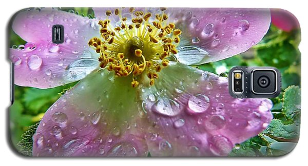 Rosey Raindrops Galaxy S5 Case