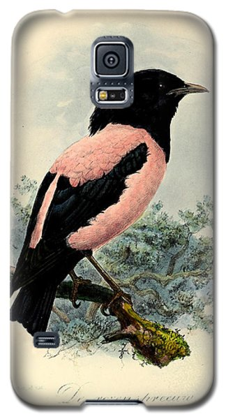 Rosy Starling Galaxy S5 Case by Rob Dreyer