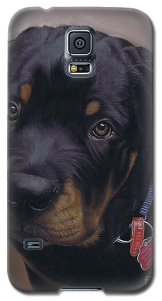 Rottweiler Dog Galaxy S5 Case