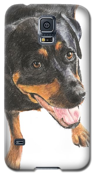 Rottweiler Looking Up Galaxy S5 Case