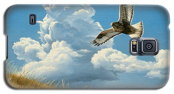 Hawk Galaxy S5 Case - Rough-legged Hawk by Paul Krapf
