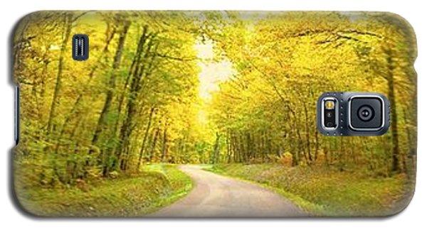 Route Dans La Foret Jaune Galaxy S5 Case