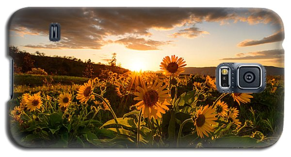 Rowena Crest Sunset Galaxy S5 Case