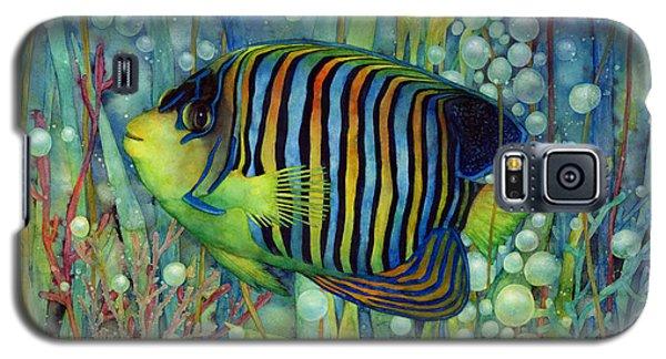 Royal Angelfish Galaxy S5 Case