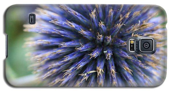 Royal Purple Scottish Thistle Galaxy S5 Case by Peta Thames