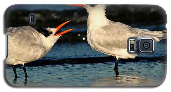 Galaxy S5 Case featuring the photograph Royal Tern Courtship Dance by John F Tsumas