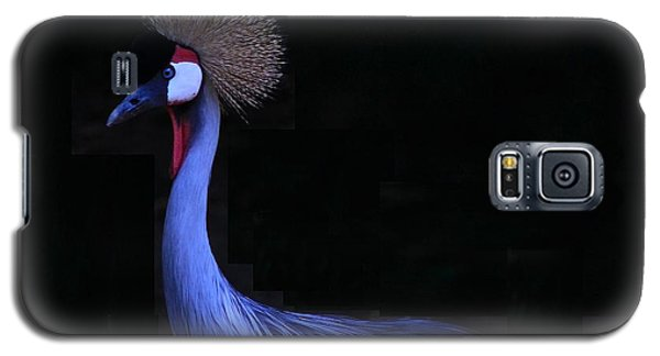 Animal 6 Galaxy S5 Case