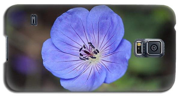 Rozanne Geranium Galaxy S5 Case