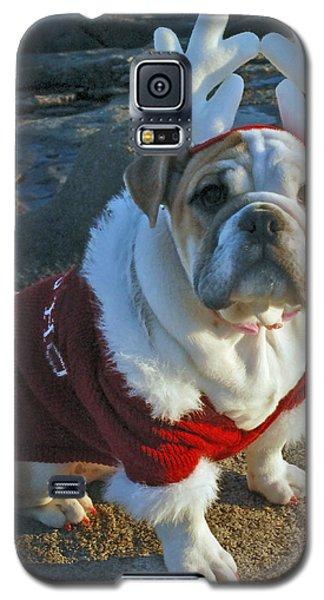 Ruby 11 Galaxy S5 Case
