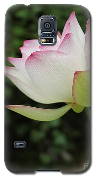 Galaxy S5 Case featuring the photograph Ruby Lips Lotus by Dodie Ulery