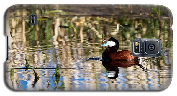 Ruddy Duck Drake Galaxy S5 Case