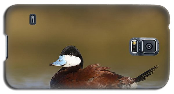 Galaxy S5 Case featuring the photograph Ruddy Duck  by Bryan Keil