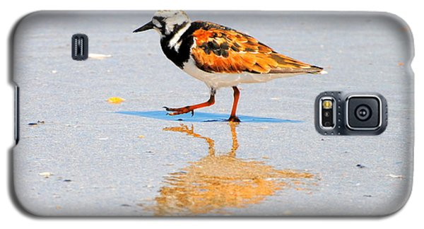 Ruddy Turnstone Galaxy S5 Case