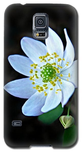Rue Anemone Galaxy S5 Case