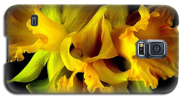 Galaxy S5 Case featuring the photograph Ruffled Daffodils by Marianne Dow