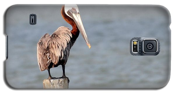 Ruffled Feathers Galaxy S5 Case