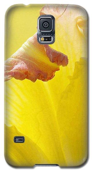 Ruffles Have Ridges Galaxy S5 Case