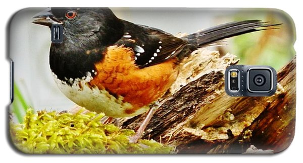 Galaxy S5 Case featuring the photograph Spotted Towhee by VLee Watson