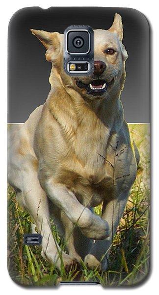 Galaxy S5 Case featuring the digital art Run Puppy Run by B Wayne Mullins