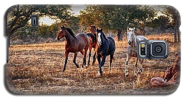 Running Horses Galaxy S5 Case
