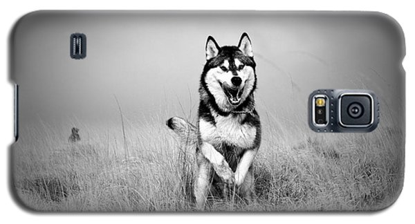 Running Wolf Galaxy S5 Case by Mike Taylor