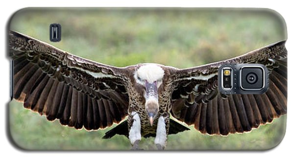 Ruppells Griffon Vulture Gyps Galaxy S5 Case by Panoramic Images